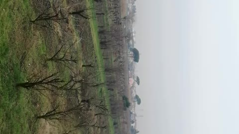 Winter landscapes italiani
