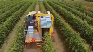 Modern agricultural machinery, incredible technology that changes the world