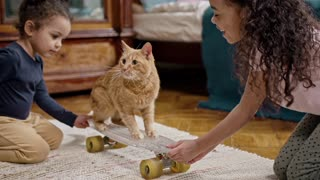 Kids Playing With Their Cat On