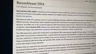 Reconbinant DNA