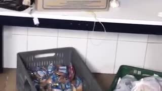 Denuncia de alimentos entregados por el PAE