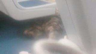 Ashy Larry Exposed caught sleep on subway!!!
