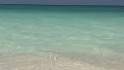 Alexandria Sea Sidi Krare