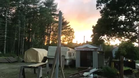 Yard and garden after storm