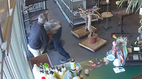 Criminal tries to steal parrot, gets beatdown from 70-year-old shop owner