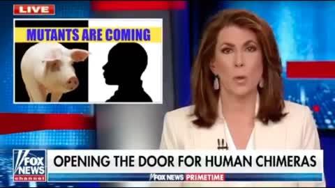 Agenda 21 - Human Chimeras - Washington DC - Vax Lies - Trump Never Conceded