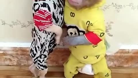 Baby monkey and dog puppy playing together