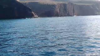 Spinner Dolphins playing off Lana'i coast, Hawaii