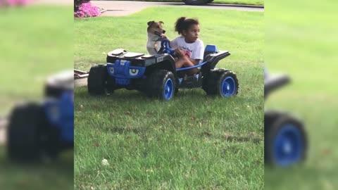 Cooper Goes Cruising In the Power Wheel