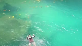 Taekwondo kick from a 10-meter cliff