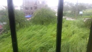 Super Typhoon flattens thick vegetation, then gets stronger