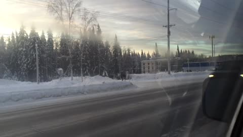 A Moose Family Was Trying To Cross the Street in Fairbanks, Alaska (2/2)