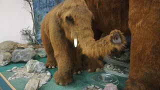 Mammoth mother with baby.