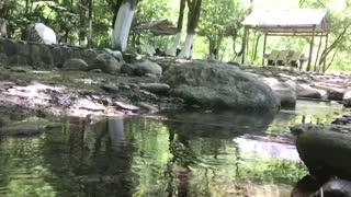restraun summer river