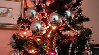 Albero di Natale 2020🙏