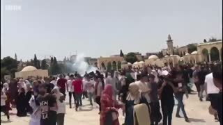 Palestine news