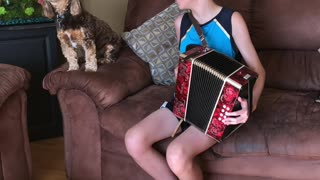 Duet with the Dog