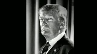 Where Are You Running Joe? Trump 2020!