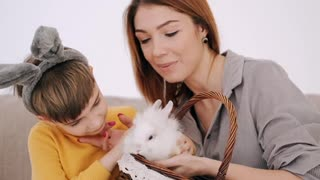 Play with the little bunny