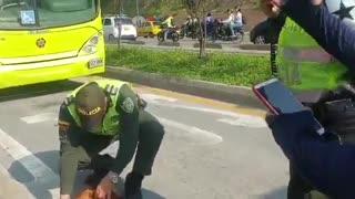 Bus de Metrolínea arrolló a un perro en la autopista a Floridablanca