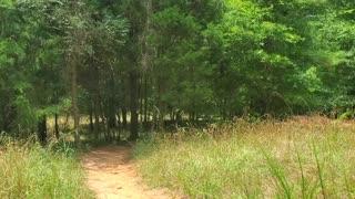 Adventure Road Prairie Loop Hiking & Biking Trail