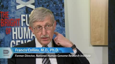 NIH Panel 2011