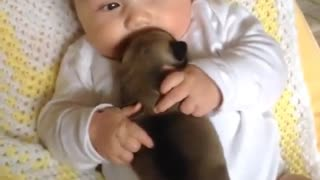 Little baby and puppy