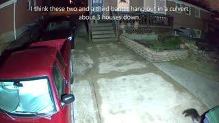 Neighborhood Bandits