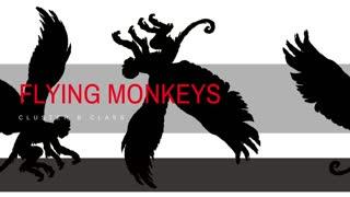 Cluster B Class - Flying Monkeys