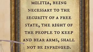 2nd Amendment video