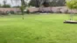Funny sports car video