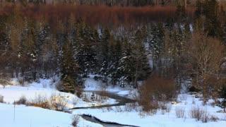 Cape Breton Winter Scenes