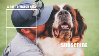 5 Minute Dog Training Video