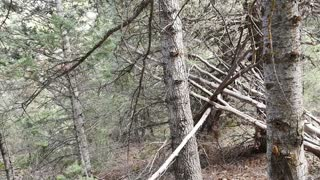 American Fork Canyon Sasquatch Structures