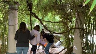 Exploring a friends garden