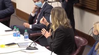 Georgia Senator Elena Parent Has a MELTDOWN in CLOSING. Speakes LIES trying to STOP GEORGIA ACTION!!