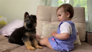 The cute baby and the little German Shepherd dog 👶🐕