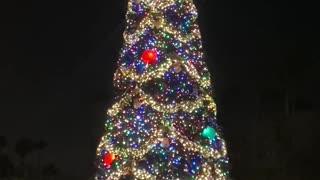 Disney Hollywood Studios Christmas tree