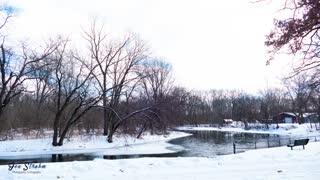 February Photos 2021