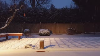 Snowmageddon 2021 in a Minute and a Half