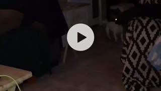 Two orbs swirling