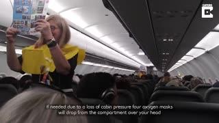 Rib Tickling Flight Attendant