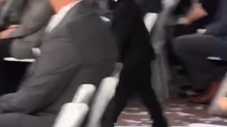 Kids add some comedy to a wedding! - Ring Bearer Fails!