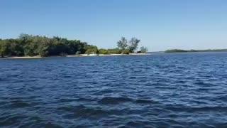 Florida waters