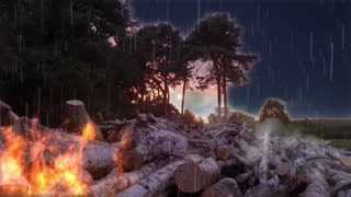 Woodland Storm
