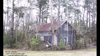Rural Decay in Eastern North Carolina