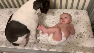 Baby smiles and talks to his sweet French Bulldog