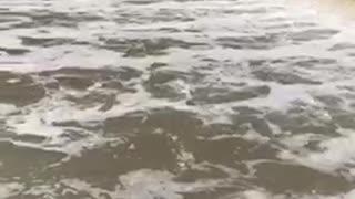 Amazing River in Canada !!