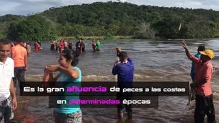 Colombia Venezuela río en rivason