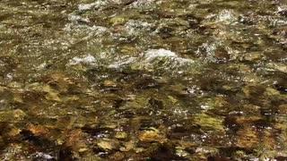 Gentle Yosemite Rapids